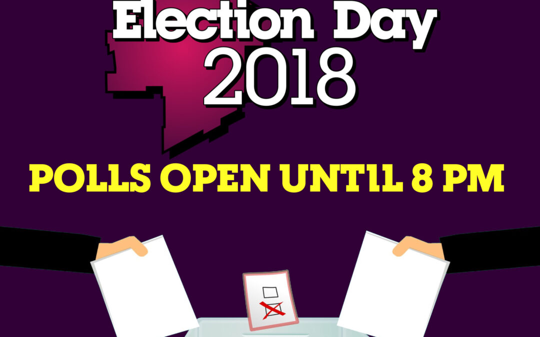 Election Information Guides